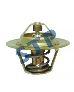 Thermostat 60 C 2485659