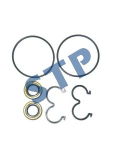 Seal Kit for Pumps for Fiat (Sonic Pumps Only)